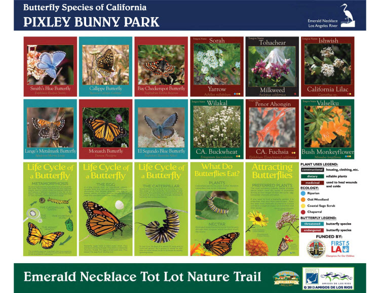 Pixley Bunny Park Signage - Butterly Species