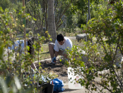 Volunteer at Rio Vista Park and Trails
