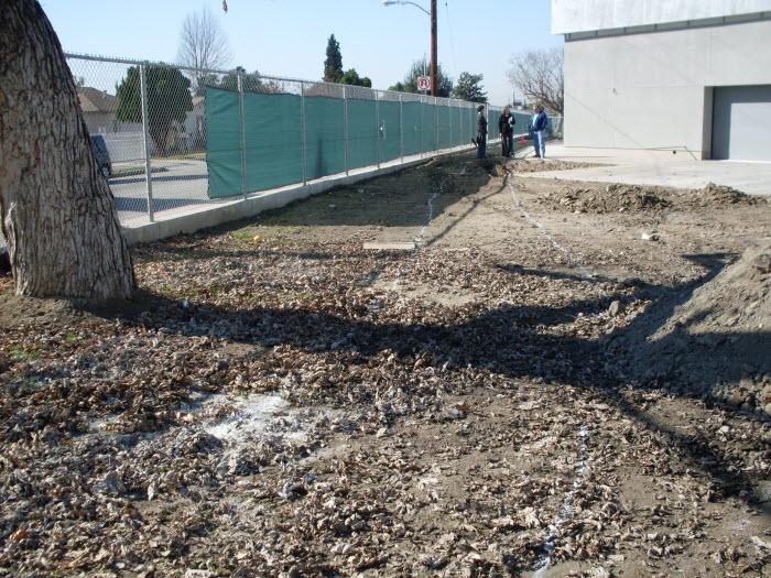 Columbia School Greening Project underway
