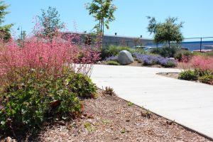 Gibson Mariposa Park walkway