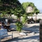 Rio Vista Park and Trail shade areas